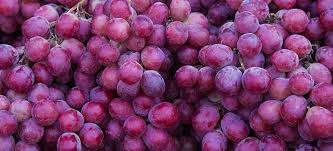 GRAPES ~ Natural Lymphatic Cleanser