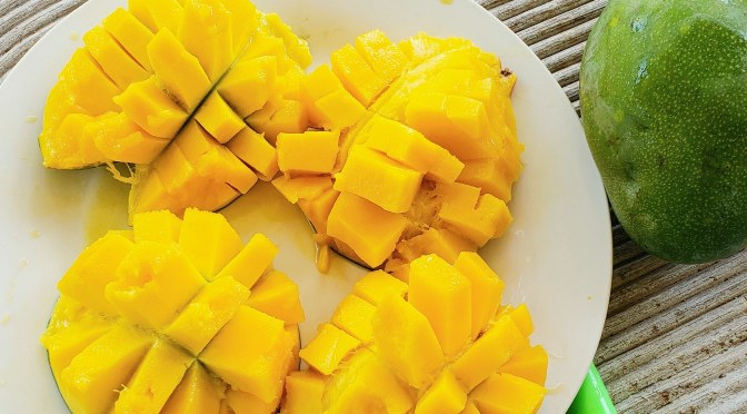 Mangos… a Pregnancy Superfood! 🥭🥭